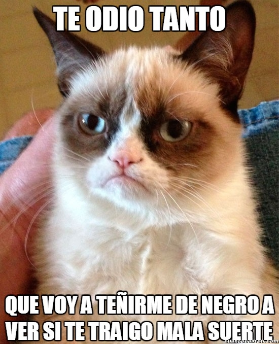 Grumpy_cat - Grumpy haciendo cualquier cosa con tal de extender su odio