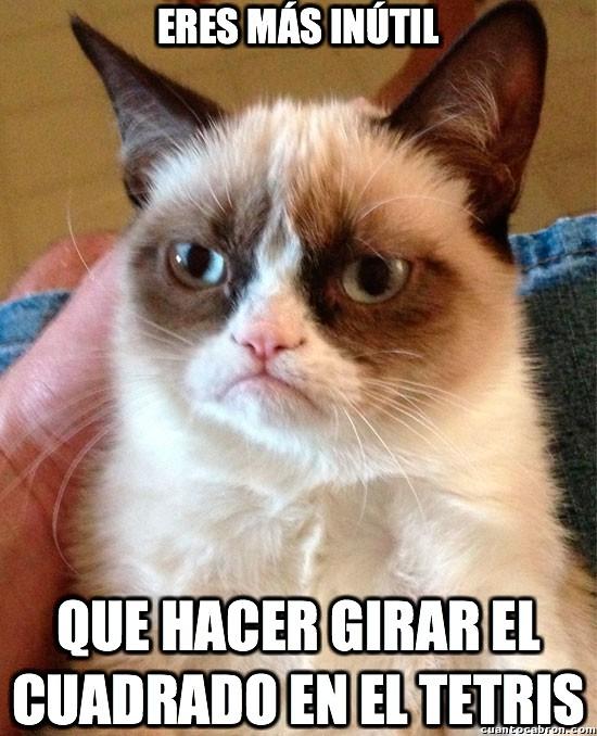 Grumpy_cat - Nuevos límites de inutilidad descubiertos