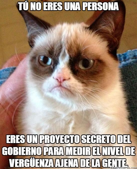 Grumpy_cat - Grumpy cat, ¿qué soy?