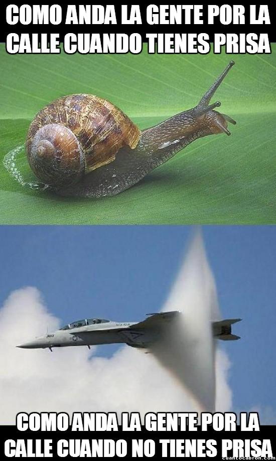 Meme_otros - La velocidad de la gente por la calle siempre es inversamente proporcional a tu prisa