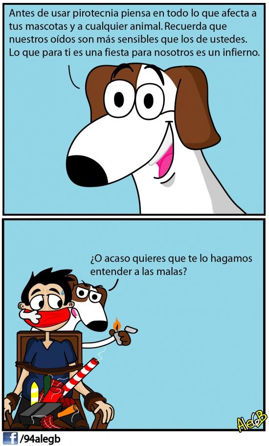 Otros - Los perros quieren que entiendas algo, por las buenas o por la malas