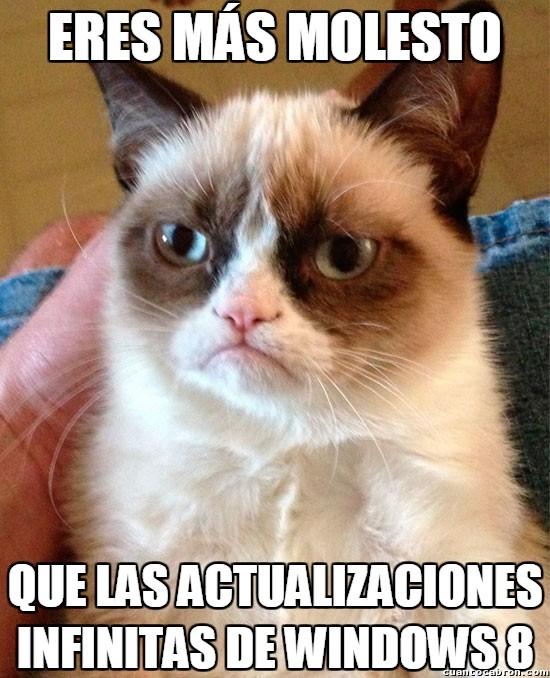 Grumpy_cat - Será por actualizaciones de Windows 8