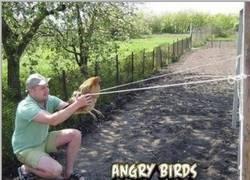 Enlace a Angry Birds llevado a la vida real
