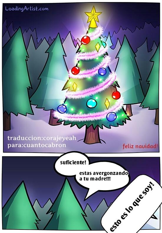 Otros - La discriminación que sufren los arbolitos navideños entre los demás abetos