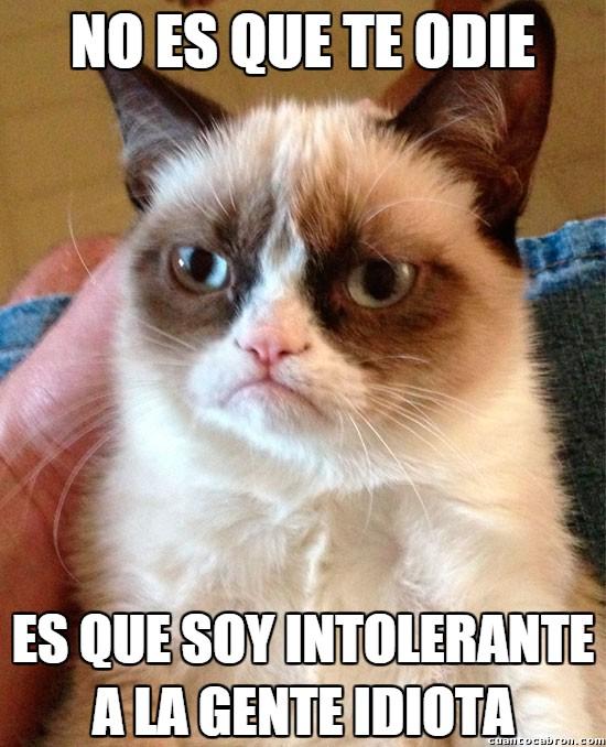 Grumpy_cat - No te lo tomes como algo personal