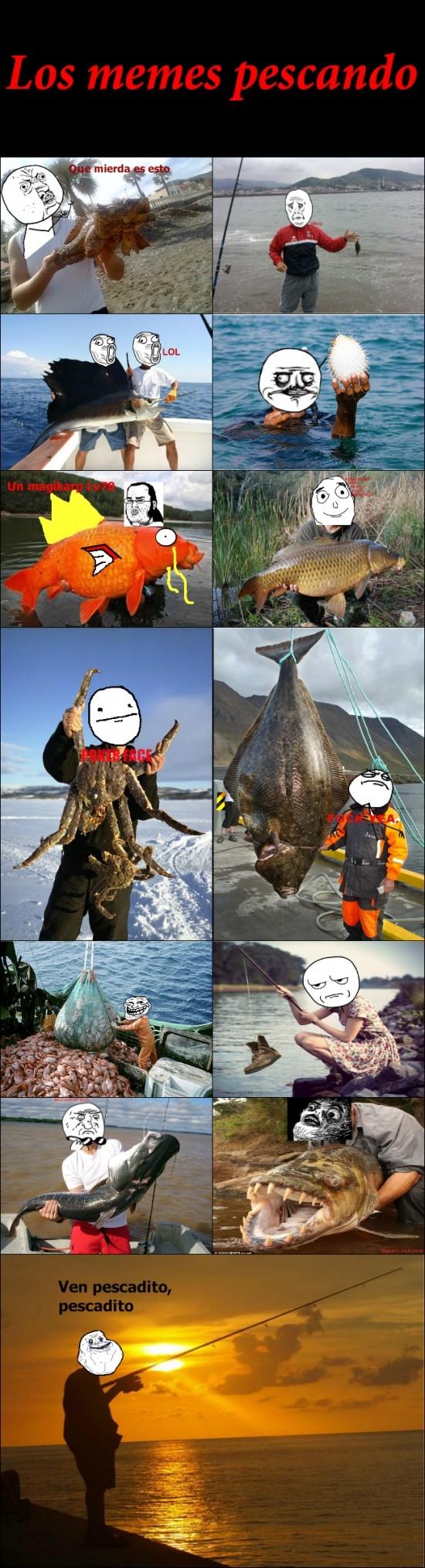 forever alone,lol,oh god why,peces,pescadores,pescando,raisins,trollface