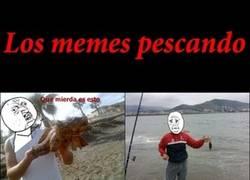 Enlace a Los memes pescando