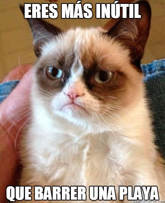 barrer,grumpy cat,inutil,playa