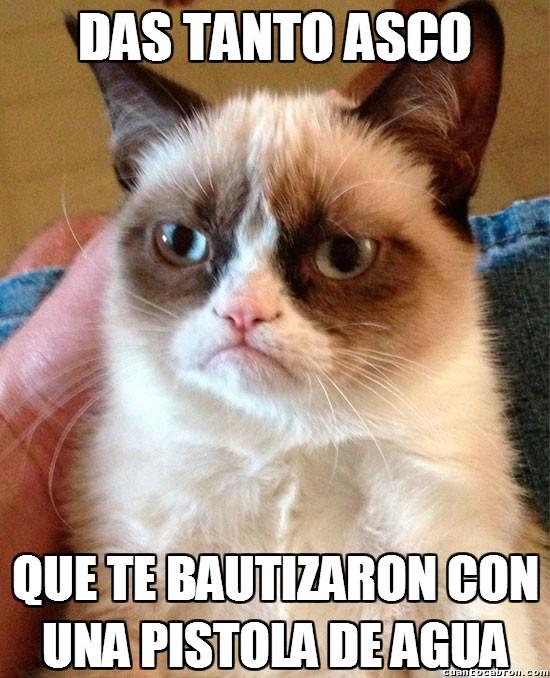 Grumpy_cat - Bautizos a una distancia prudencial