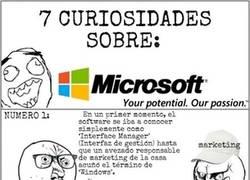 Enlace a Curiosidades de una de las empresas más grandes del mundo: Microsoft