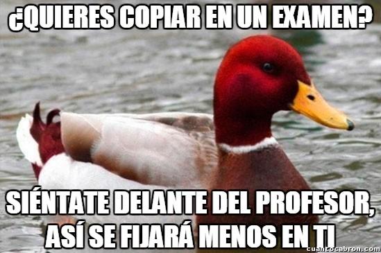 Pato_mal_consejero - En un examen, ya sabes qué posición en la clase debes ocupar, ¿no?
