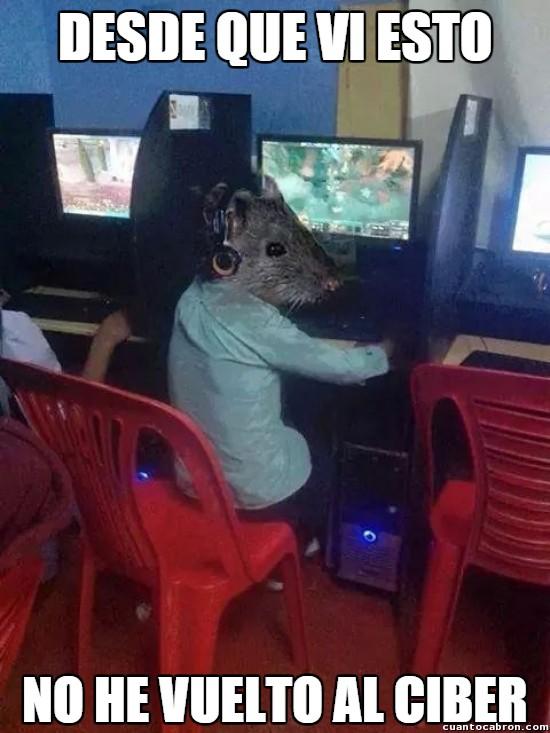 Meme_otros - La plaga de los ciber