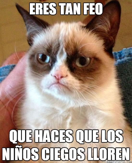 Grumpy_cat - Esto te va a doler mucho