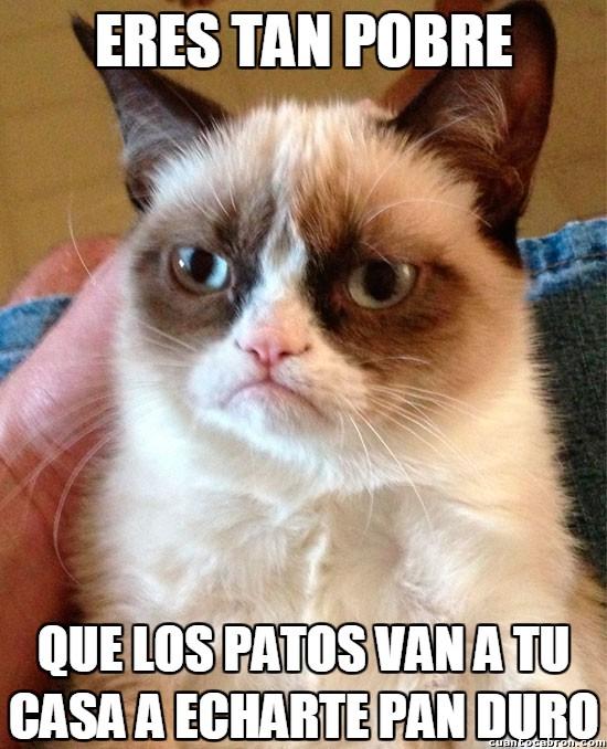 Grumpy_cat - Si es que no se puede ser más pobre