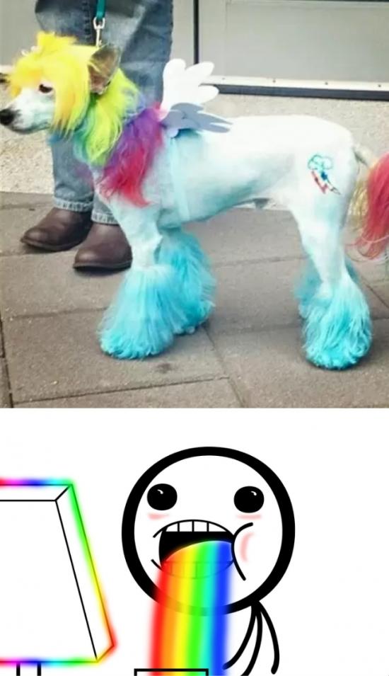 Puke_rainbows - El perro perfecto para un bronie