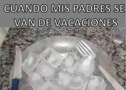 Enlace a Cuando mis padres se van de vacaciones y mi alimentación depende de mí
