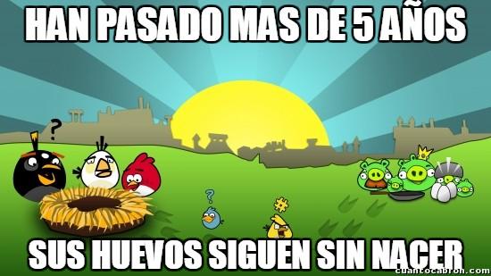 Meme_otros - Igual deberían cambiar un poco ya el argumento de los Angry Birds