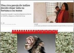 Enlace a El mono más rico del mundo