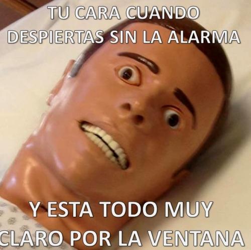 Meme_otros - Creo que alguien se ha dormido...
