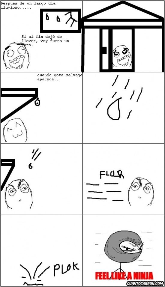 Feel_like_a_ninja - El ninja de los días lluviosos