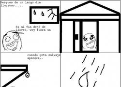 Enlace a El ninja de los días lluviosos