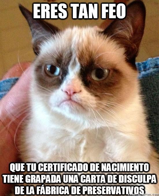 Grumpy_cat - Puestos a insultar, hazlo con estilo como Grumpy