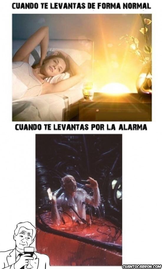 Otros - Diferentes maneras de levantarse de la cama