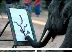 Enlace a Nunca podrás creer lo que es capaz de hacer este elefante con un pincel