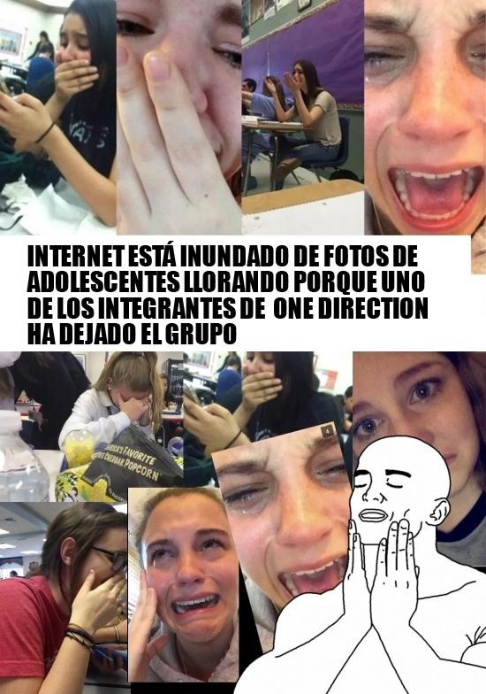 Otros - El día que One Direction se desmembró