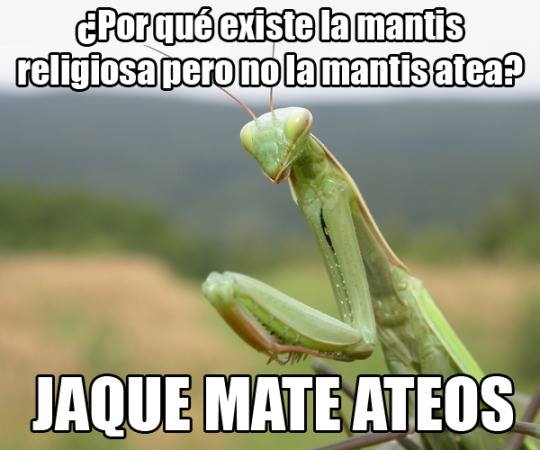 Meme_otros - Jaque mate, ateos