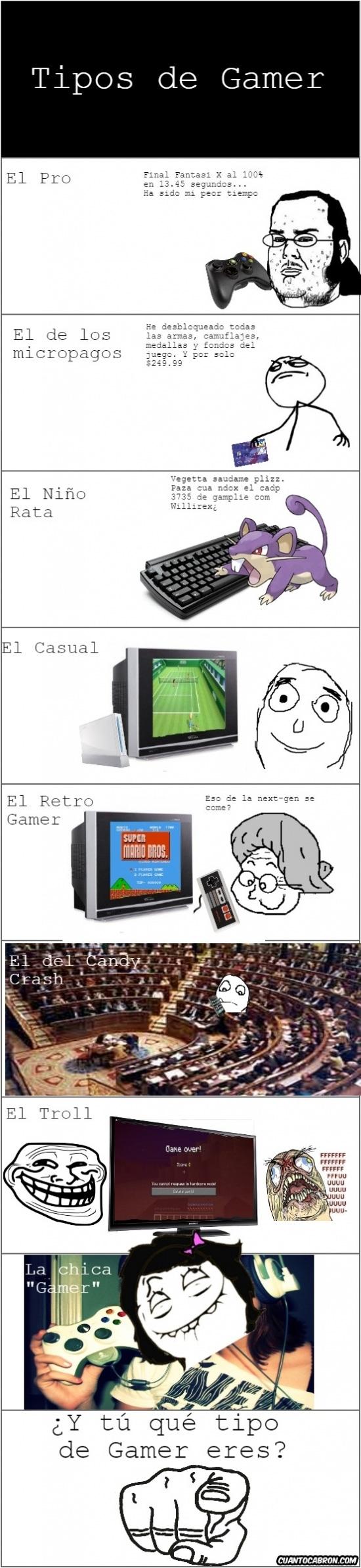 Friki - Tipos de gamer