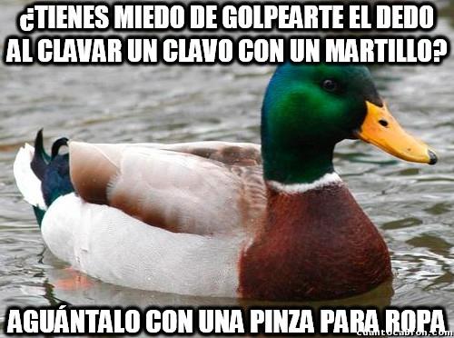 Pato_consejero - Y el briconsejo de hoy es...