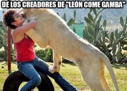 Enlace a Si te gustó el ''león come gamba'', espera a ver esto