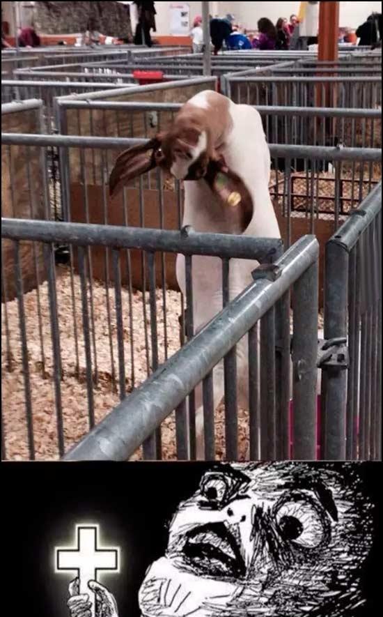 Inglip - Si ya de por sí la cabra es el animal que se asocia con el diablo...