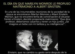 Enlace a El día que Marylin le propuso matrimonio a Einstein y su ''turn down for what''