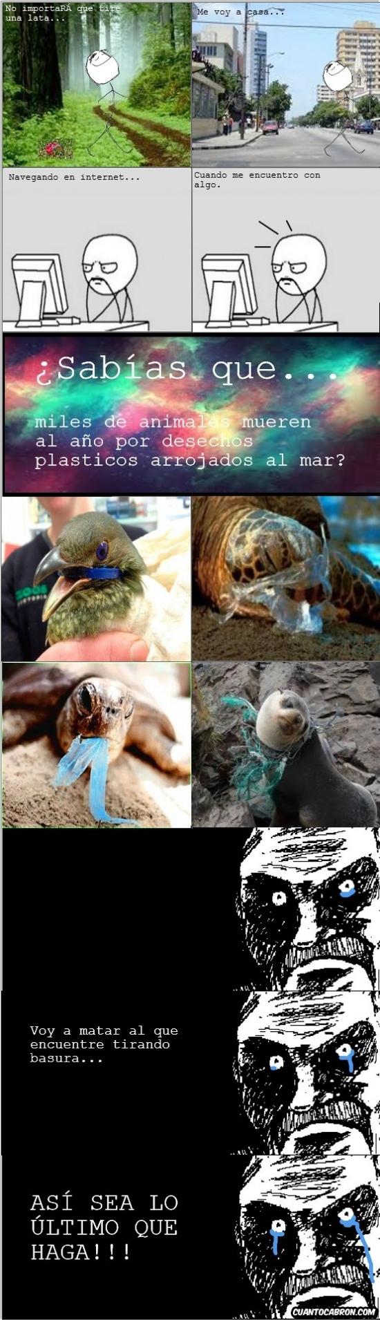 animales,Basura,lagrimas,muerte,no tirar,plastico,sabias que