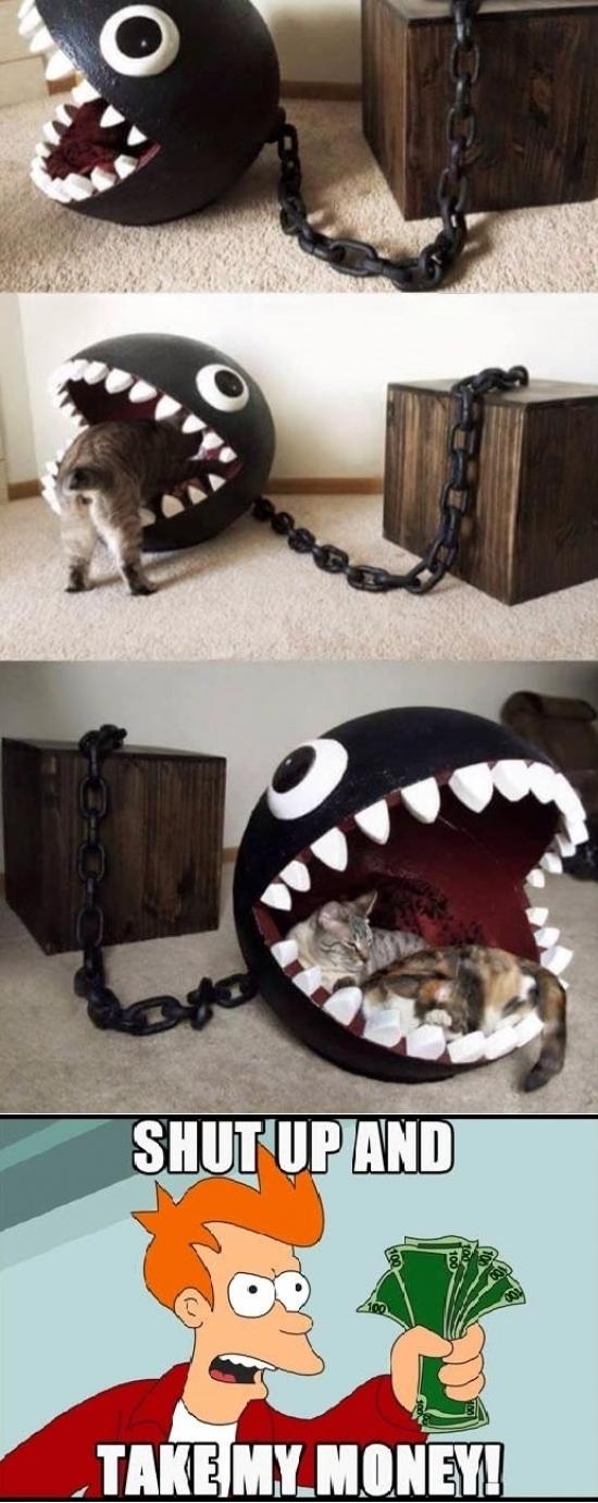 Fry - Todos los amantes de los gatos y de Mario Bros querrán esto
