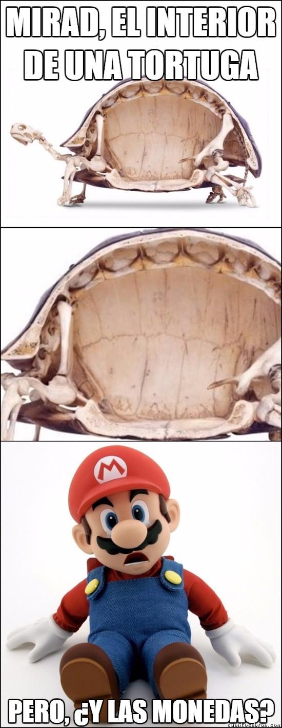 Meme_otros - Pero, pero Nintendo dijo que...