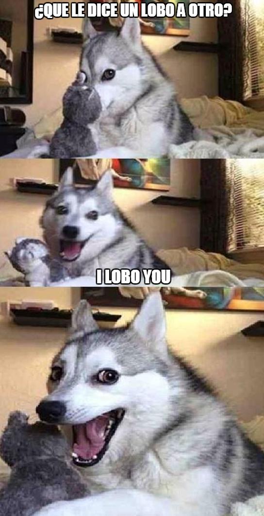 Meme_otros - Amor lupino