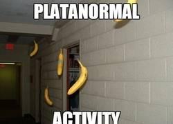 Enlace a En mi casa pasan ciertos fenómenos paranormales que no soy capaz de explicar