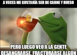 Enlace a Tiene sus ventajas ser de peluche, si no preguntárselo a la rana Gustavo...