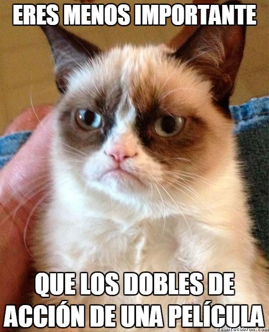 Grumpy_cat - ¿Pero es que nadie va a pensar en los dobles de acción?