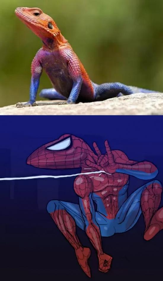 Otros - No veras a Spider-man de la misma manera