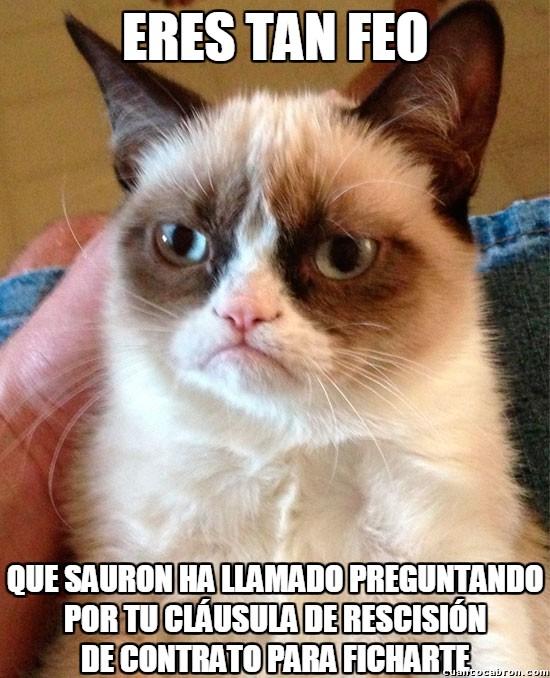Grumpy_cat - Estamos en época de fichajes y claro...