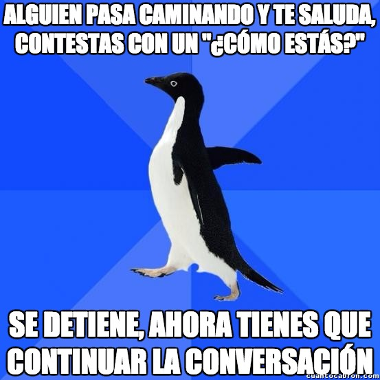 awkward penguin,conversación,incómodo,qué tal todo?,saludo