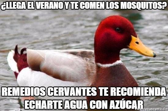 Pato_mal_consejero - Consejos de Remedios Cervantes