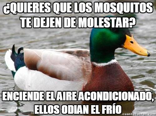 Pato_consejero - Cómo espantar mosquitos en estas épocas