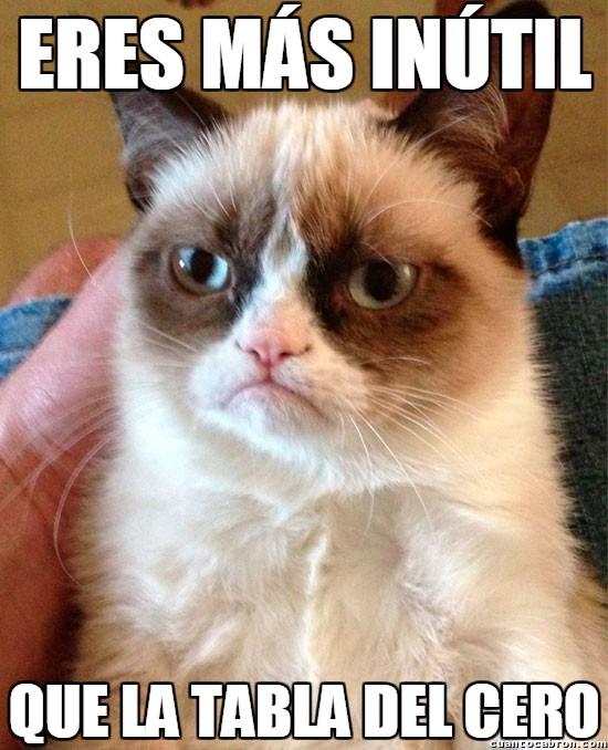 Grumpy_cat - La inutilidad en todas sus formas expresadas