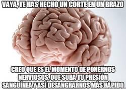 Enlace a El cerebro siempre sabe lo que más te conviene