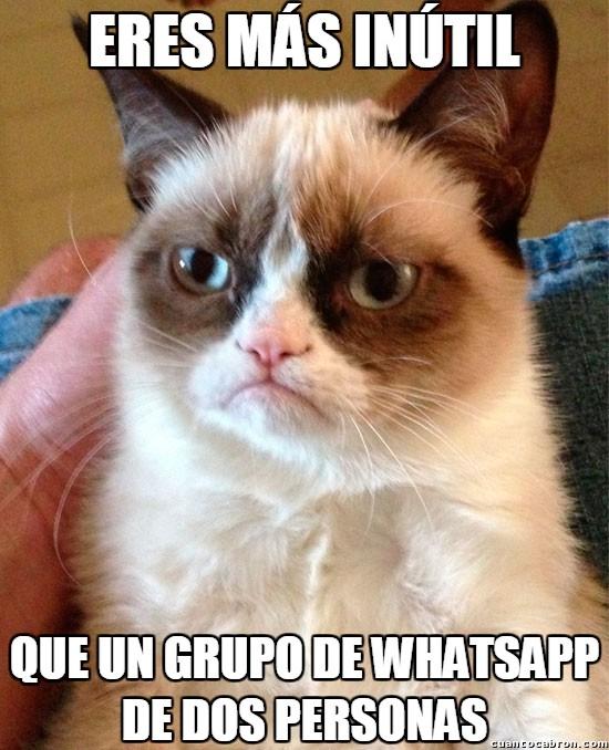 Grumpy_cat - Lo triste es que hay gente que lo hace así
